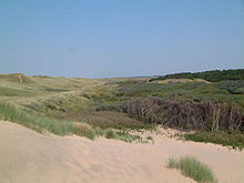 Formby Point and Red Squirrel Reserve